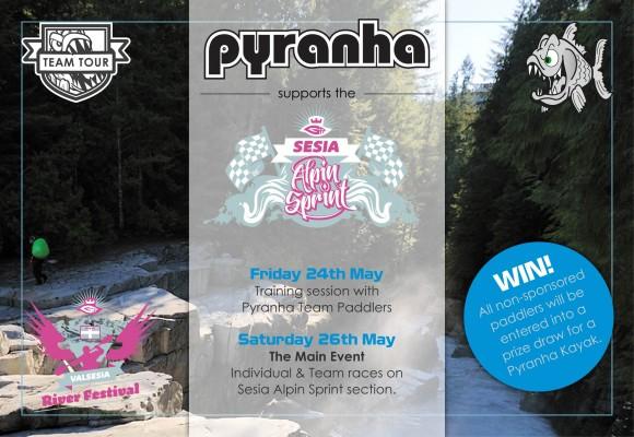 Pyranha SAS 2013 flyer